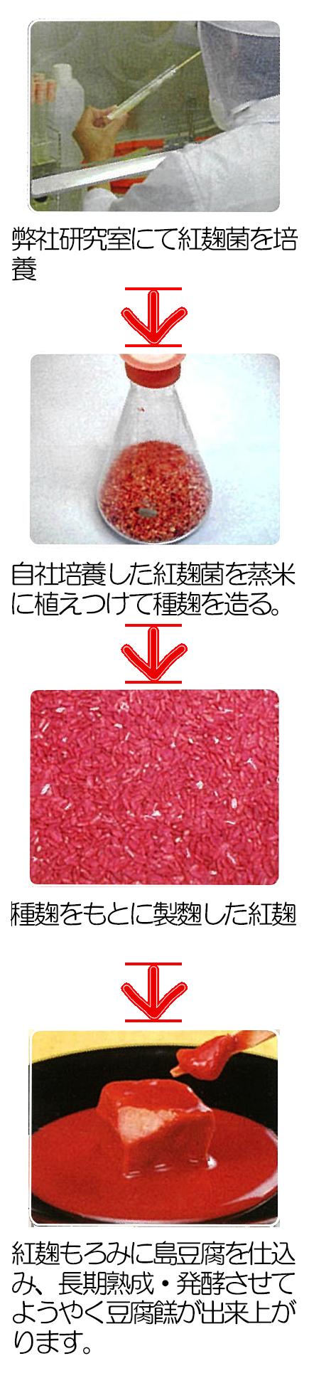 紅麹培養工程